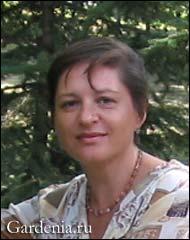 автор дайджеста Елена Зиборова