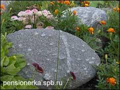 Оригинальные камни в альпинарии