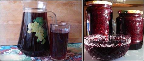 Ягоды жимолости: рецепты и вкусные заготовки