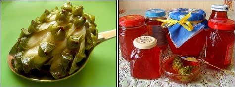 сваренная мягкая шишка; запас соснового мёда