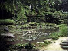 Сад в японском стиле ч 11 стилистика