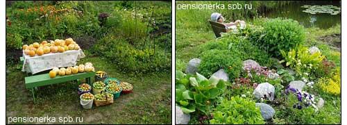 урожай и альпийская горка у садового водоема