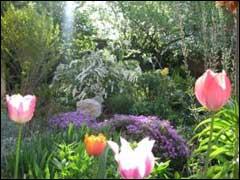 http://www.gardenia.ru/pages/i/sady045.jpg