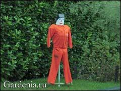 пугало в саду Светланы Кругликовой