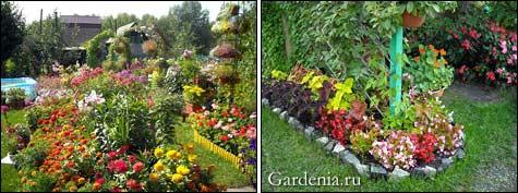 Дача. цветы